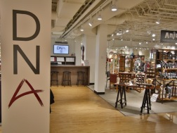 PIC - DNA Showroom